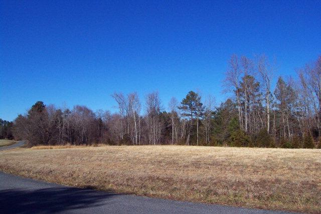 Real Estate for Sale, ListingId: 31438921, Buffalo Junction,VA24529