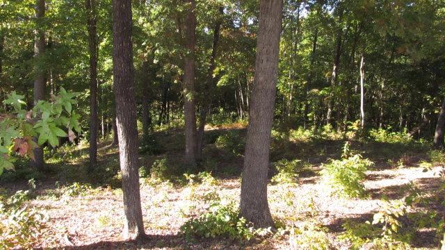 Real Estate for Sale, ListingId: 35963552, Clarksville,VA23927