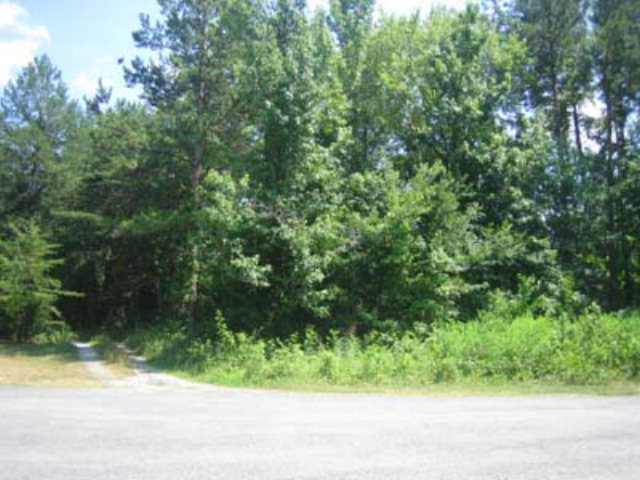 Land for Sale, ListingId:16631319, location: 0 Laura Court Halifax 24558