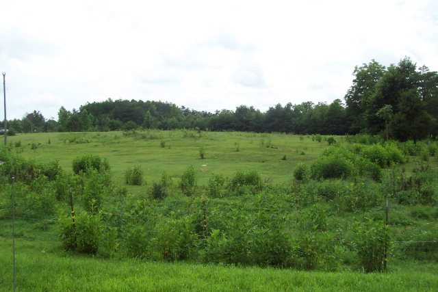 Land for Sale, ListingId:24503491, location: 4.9 ac Powell Lane off Leighwood Tr Halifax 24558