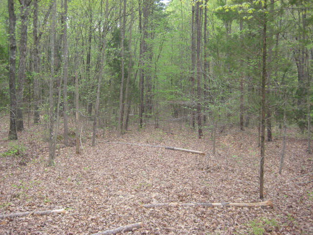 Land for Sale, ListingId:16631180, location: 26 Lakeview Estates Clarksville 23927