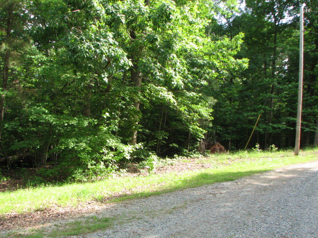 Featured Property in Buffalo Junction, VA 24529