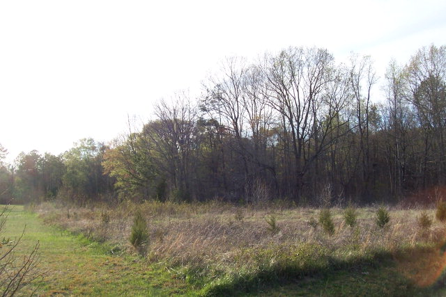 Land for Sale, ListingId:16723207, location: 7.49ac Charles Lane Halifax 24558