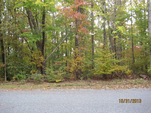 Real Estate for Sale, ListingId: 25792068, Clarksville,VA23927