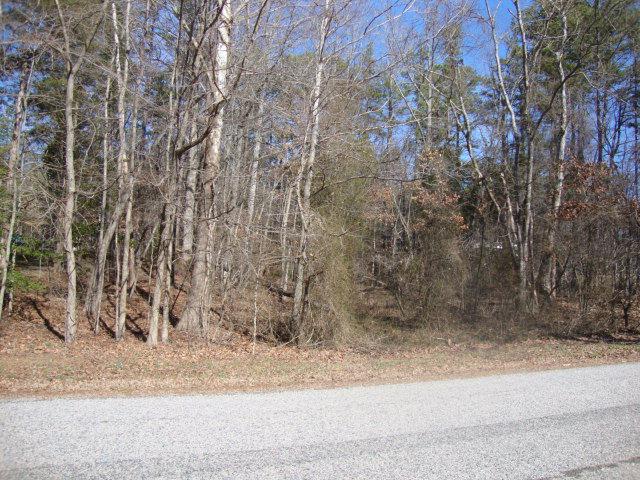 Real Estate for Sale, ListingId: 23612078, Buffalo Junction,VA24529